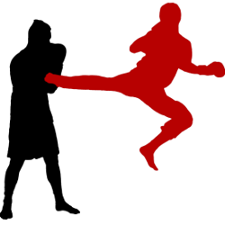 Savate boxe Française adulte